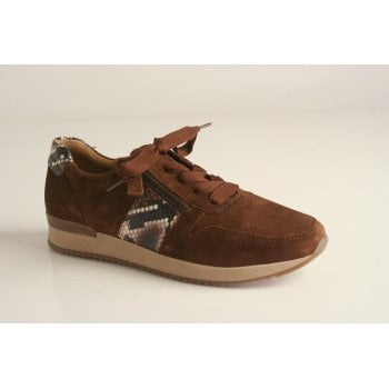 Gabor trainer style in brown snake (NT H)